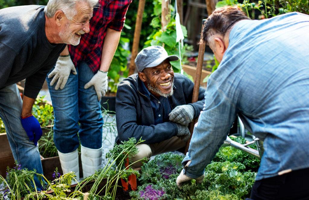 community gardeners gardening